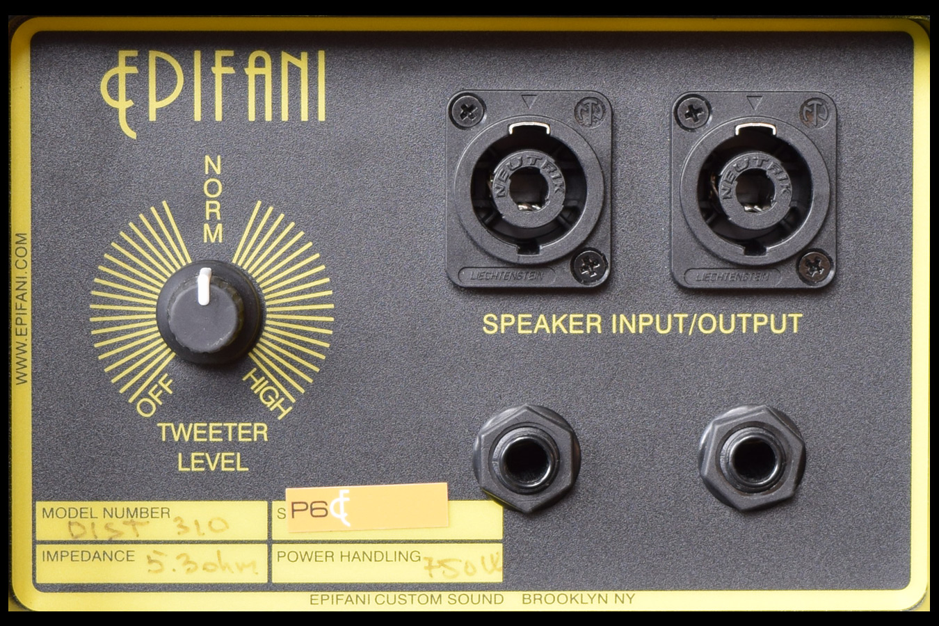 Epifani Dist 310 Bass Cabinet, High End Guitars, Amp, String