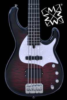 FU5MMJ_BlackCherryBurst_Icon